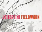 Jo Bertini Fieldwork