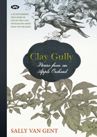 Clay Gully