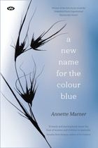 A New Name for the Colour Blue - ebook: epub