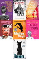 Young Adult Fiction Bundle